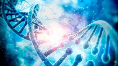 Photo of Genetik tahlil nedir ?