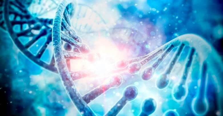 Genetik Tahlil Nedir